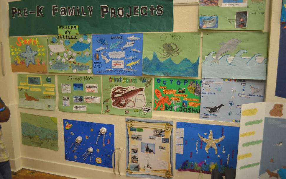 Sci Fair 2014 prek family projects.jpg